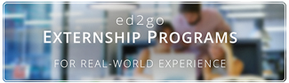 Esternship Programs for Real-World experience