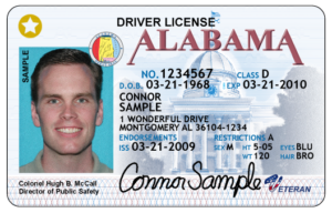 Example Alabama Driver's License
