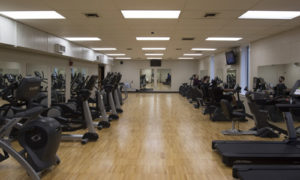 Fitness & Wellness Centers